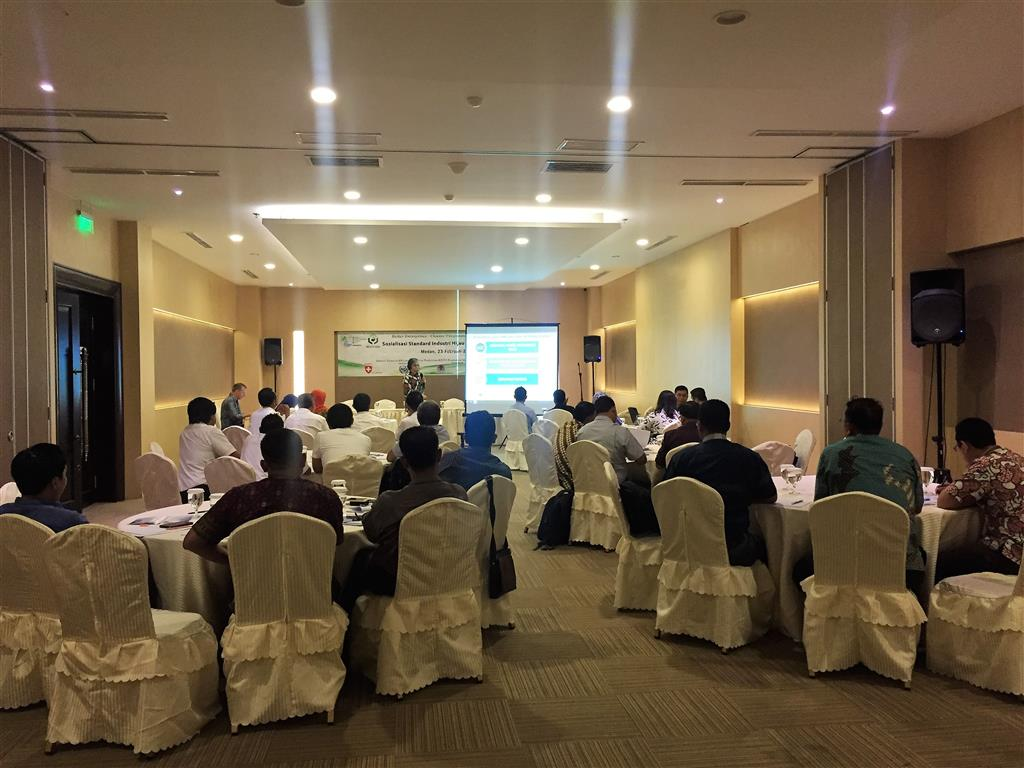 The 3rd national series of awareness and introductory workshop on GIS and RECP as business opportunity for palm oil factories. Medan, 23 February 2017.